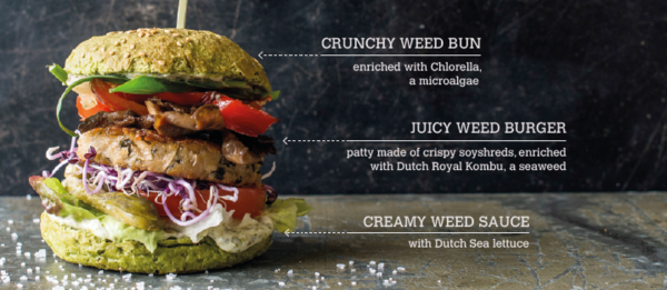 https://dutchweedburger.com/de-burger/